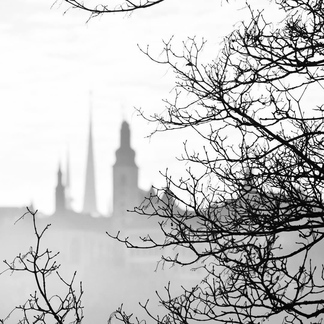 Luxembourg dans le brouillard